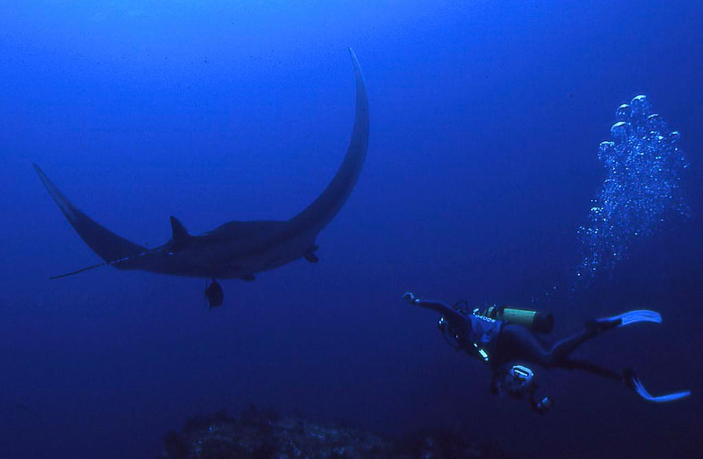 Scuba-Dive-Volcano-Cloud-Forest-Adventure-12